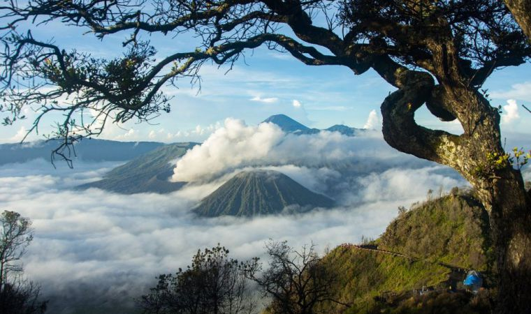 bromo indonesie
