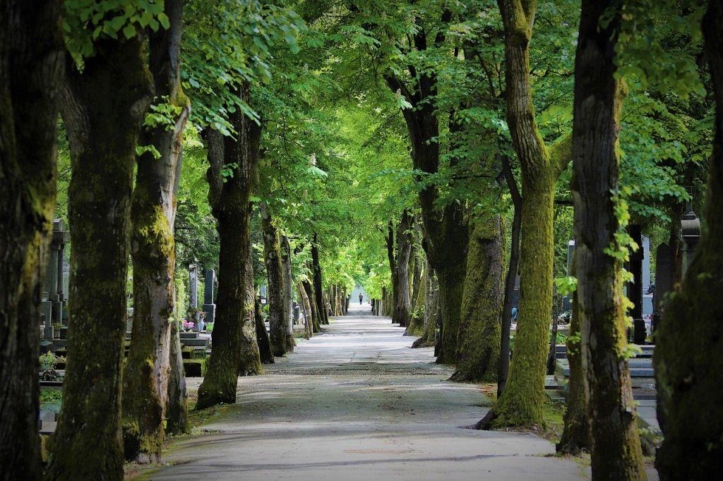 parken in Zagreb